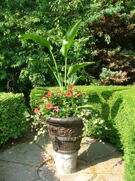 Backyard urn